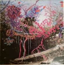 Animal Collective: Here Comes The Indian, LP