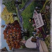 David Dondero: The Filter Bubble Blues, LP