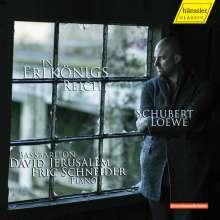 David Jerusalem - In Erlkönigs Reich (Balladen von Schubert & Loewe), CD