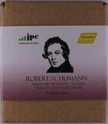 Robert Schumann (1810-1856): Florian Uhlig spielt Schumann, 6 CDs