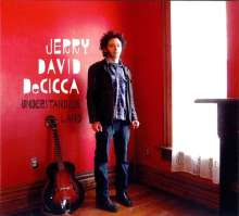 Jerry Decicca: Understanding Land, LP