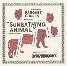 Parquet Courts: Sunbathing Animal, CD