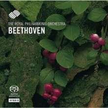 Ludwig van Beethoven (1770-1827): Symphonien Nr.2 & 8, Super Audio CD