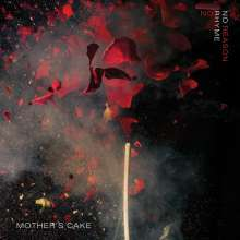 Mother's Cake: No Rhyme No Reason (180g), 2 LPs