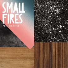 Small Fires: All This Noise, LP