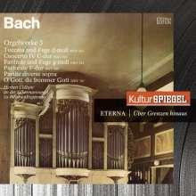 Johann Sebastian Bach (1685-1750): Orgelwerke an Silbermannorgeln, CD