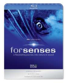 Blu::Elements Project: Forsenses, Blu-ray Disc