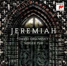 Singer Pur & David Orlowsky - Jeremiah (Digipack), CD