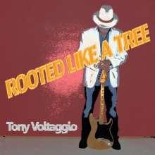 Tony Voltaggio: Rooted Like A Tree, CD