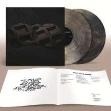 Dirty Projectors: Dirty Projectors (Limited-Deluxe-Edition) (Brown Marbled Vinyl), 2 LPs