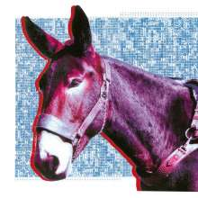 Protomartyr: Ultimate Success Today (Digisleeve), CD