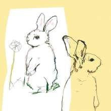 Beat Happening: Look Around (remastered) (180g), 2 LPs
