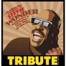 A Tribute To Stevie Wonder (Bandhouse Gigs Present, CD
