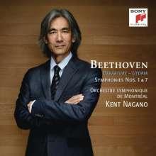 Ludwig van Beethoven (1770-1827): Symphonien Nr.1 & 7, CD