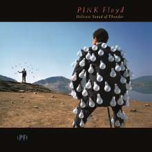 Pink Floyd: Delicate Sound Of Thunder: Live (remastered) (180g), 2 LPs