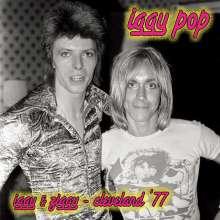 Iggy Pop: Iggy & Ziggy (Limited Edition) (Pink Vinyl), LP