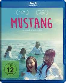 Mustang (Blu-ray), Blu-ray Disc