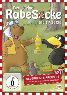 Der kleine Rabe Socke - Die TV-Serie DVD 9, DVD