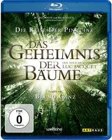 Das Geheimnis der Bäume (Blu-ray), Blu-ray Disc