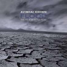 Avishai Cohen (Trumpet) (geb. 1978): Flood (Part 2 Of Big Rain Trilogy), CD