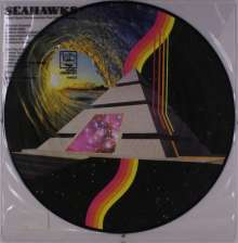 Seahawks: Vision Quest One: Spaceships Over Topanga Canyon (Picture Disc), LP