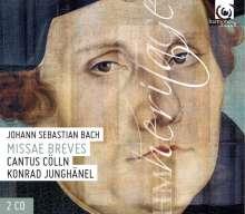 Johann Sebastian Bach (1685-1750): Messen BWV 233-236 (Lutherische Messen), 2 CDs