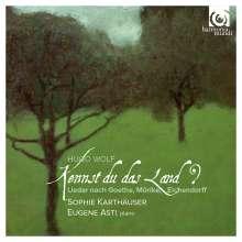 """Hugo Wolf (1860-1903): Lieder """"Kennst du das Land?"""", CD"""