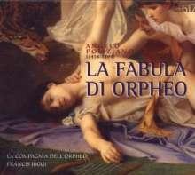 Angelo Poliziano (1454-1494): La Fabula Di Orpheo, CD