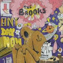 The Brooks: Any Day Now, 2 LPs