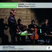Gerard Pesson (geb. 1958): Kammermusik & Kantaten, 2 CDs