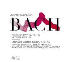 Johann Sebastian Bach (1685-1750): Kantaten BWV 12,78,150, CD
