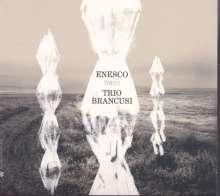 George Enescu (1881-1955): Klaviertrios Nr.1 & 2  (g-moll & a-moll), CD