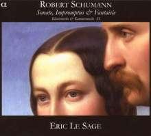 Robert Schumann (1810-1856): Klavierwerke & klavierbegleitete Kammermusik Vol.2, CD