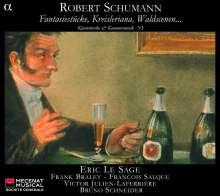 Robert Schumann (1810-1856): Klavierwerke & klavierbegleitete Kammermusik Vol.6, 2 CDs