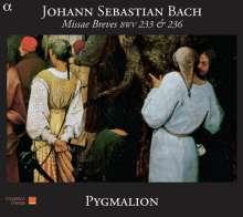 Johann Sebastian Bach (1685-1750): Messen BWV 233 & 236 (Lutherische Messen), CD