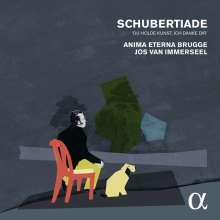 Franz Schubert (1797-1828): Schubertiade (Lieder & Instrumentalwerke), 4 CDs