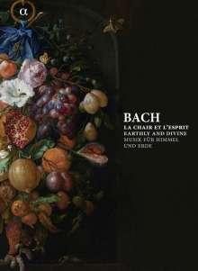 Johann Sebastian Bach (1685-1750): Bach - Musik für Himmel und Erde (Buch mit CDs), 6 CDs