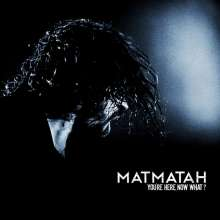Matmatah: You're Here, Now What? (Live), 2 LPs