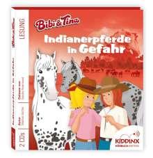 """Hörbuch """"Indianerpferde in Gefahr"""", 2 CDs"""