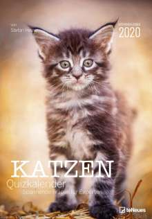 Stefan Heine: Katzen Quizkalender 2020, Diverse