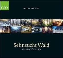 GEO Kalender: Sehnsucht Wald 2022 - Wand-Kalender - 60x55, Kalender
