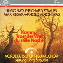 Norddeutscher Figuralchor - Komm,Trost der Welt, CD