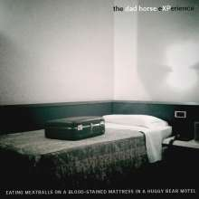 The Dad Horse Experience: Eating Meatballs On A Blood-Stained Mattress In A Huggy Bear Motel, CD