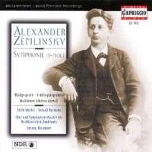 Alexander von Zemlinsky (1871-1942): Symphonie Nr.1 d-moll, CD