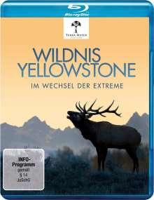 Wildnis Yellowstone - Im Wechsel der Extreme (Blu-ray), Blu-ray Disc