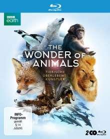 The Wonder of Animals: Tierische Überlebenskünstler (Blu-ray), 2 Blu-ray Discs