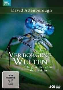 Verborgene Welten - Das geheime Leben der Insekten, 2 DVDs