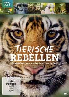 Tierische Rebellen, DVD