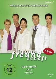 In aller Freundschaft Staffel 6 Box 1, 6 DVDs