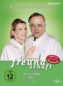 In aller Freundschaft Staffel 12 Box 2, 5 DVDs